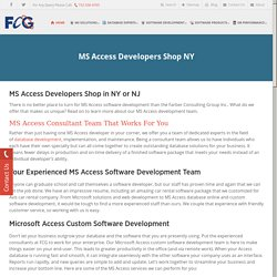 Microsoft Access Custom Software Development