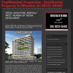 Veena Signature Pre Launch