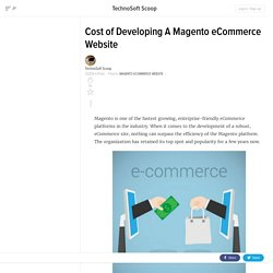 Cost of Developing A Magento eCommerce Website