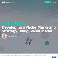 Developing a Niche Marketing Strategy Using Social Media