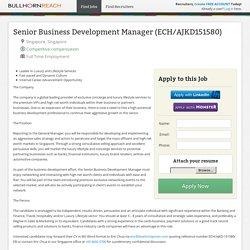 Senior Business Development Manager (ECH/AJKD151580) in Singapore, Singapore