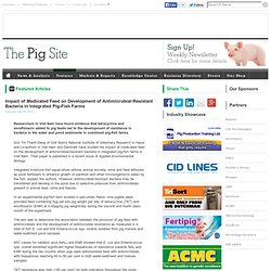 PIGSITE 19/07/11 Impact of Medicated Feed on Development of Antimicrobial-Resistant Bacteria in Integrated Pig-Fish Farms