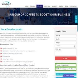 Java Application, Java App, Custom Java Application – Development