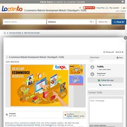 E-commerce Website Development Mohali/ Chandigarh