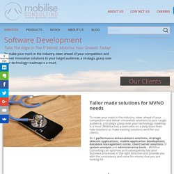 Software Development - Mobilise Consulting