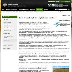 AUSTRALIAN GOVERNMENT 18/12/12 One in 10 weeds high risk for glyphosate resistance