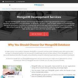 Expert MongoDB Database Development Services