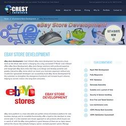 eBay Store Development