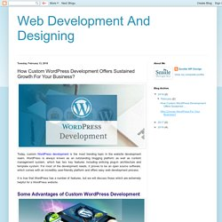 Web Development And Designing: How Custom WordPress Development Offers Sustained Growth For Your Business?