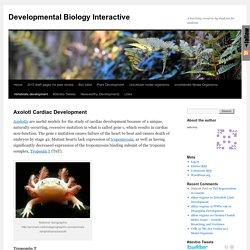 Developmental Biology Interactive
