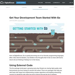 Get Your Development Team Started With Go