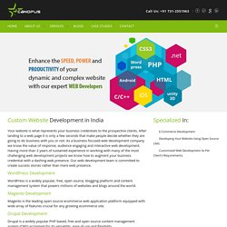 Pioneering Web Development Company in India - Canopus Infosystems