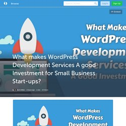 What makes WordPress Development Services A good Investment for Small Business Start-ups? (with image) · kerinmiller