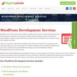 WordPress Development Services & Maintenance Solution
