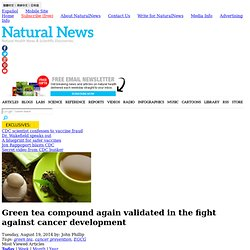 Green tea compound again validated in the fight against cancer development