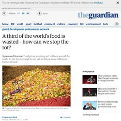 THE GUARDIAN 07/11/13 A third of the world's food is wasted – how can we stop the rot?
