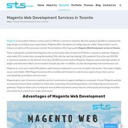 Magento Web Development Services In Toronto