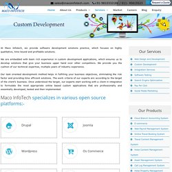 Custom Development Service - Maco Infotech Ltd