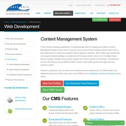 Get CMS based Website Built from an Expert