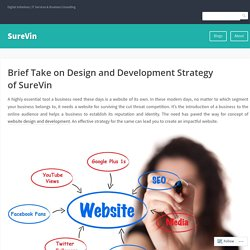 Brief Take on Design and Development Strategy of SureVin – SureVin
