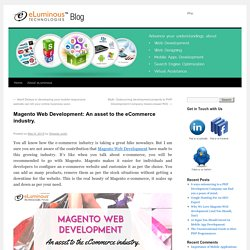 Magento Web Development & the ecommerce industry