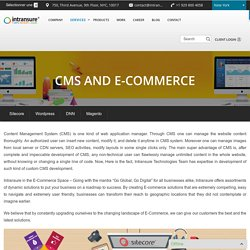 CMS Development, E-Commerce Website Development Services Company