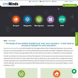 Full Web Development Service - cmsMinds