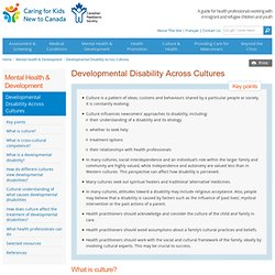 Developmental Disability Across Cultures