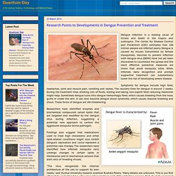 Research Points to Developments in Dengue Prevention and Treatment