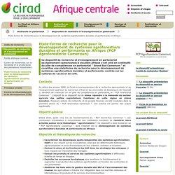 CIRAD - Plate-forme de recherche pour le développement de systèmes agroforestiers durables et performants en Afrique (PCP Agroforesterie Cameroun)