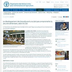 FAO11/10/13Le développement des biocarburants ne doit pas compromettre la sécurité alimentaire, selon le CSA