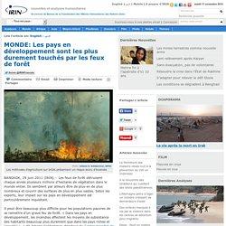 MONDE: Les pays en développement sont les plus durement touchés par les feux de forêt