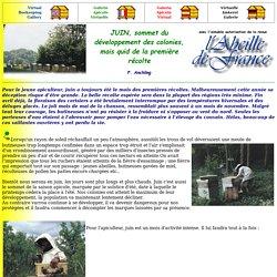 JUIN, sommet du développement des colonies, mais quid de la première récolte