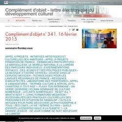 Complément d'objet n° 341, 16 février 2015 - Complément d'objet - lettre électronique du développement culturel - Ministère de la Culture et de la Communication