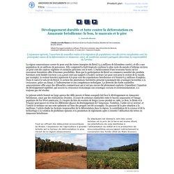 Développement durable et lutte contre la déforestation en Amazonie brésilienne: le bon, le mauvais et le pire