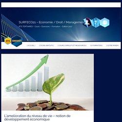 Niveau de vie et développement économique