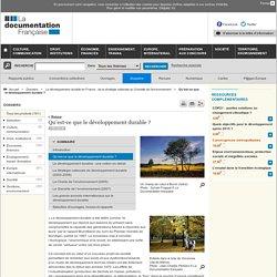 Qu'est-ce que le développement durable ? - Le développement durable en France : de la stratégie nationale au Grenelle de l'environnement