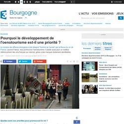 Pourquoi le développement de l'oenotourisme est-il une priorité ? - France 3 Bourgogne