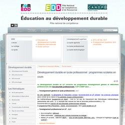 EDD : les textes - Développement durable en lycée professionnel : programmes scolaires en cours