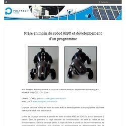 Prise en main du robot AIBO et développement d'un programme