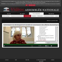 ASSEMBLEE NATIONALE 25/06/20 Commission du développement durable et commission des affaires économiques: Audition de représentants de la Convention citoyenne pour le climat