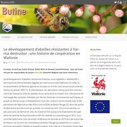 BUTINE_INFO 04/12/19 Le développement d'abeilles résistantes à Varroa destructor : une histoire de coopération en Wallonie