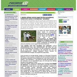 """Puissance 2D - Le développement durable en région - L'abeille utilisée comme agent de bio-surveillance, notamment autour d'entreprises """"sensibles"""""""