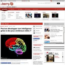 Santé - Beauté - Peut-on développer son intelligence grâce à des jeux cérébraux ciblés ?