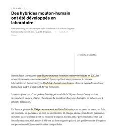 NATIONAL GEOGRAPHIC 19/02/18 Des hybrides mouton-humain ont été développés en laboratoire