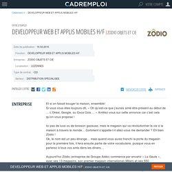 Emploi DEVELOPPEUR WEB ET APPLIS MOBILES H/F - LEZENNES sur CADREMPLOI.fr