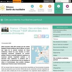 10 nov. 2020 France: Chooz: Des amibes dans la Meuse? EDF déverse des produits chimiques
