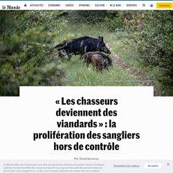 LE MONDE 18/07/20 « Les chasseurs deviennent des viandards » : la prolifération des sangliers hors de contrôle