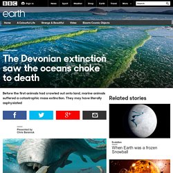 Earth - The Devonian extinction saw the oceans choke to death