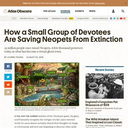 How a Small Group of Devotees Are Saving Neopets From Extinction